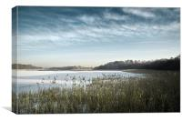 Ormesby Broad under snow and ice, Canvas Print