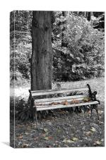 Lonely Autumn Bench, Canvas Print