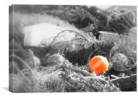 Orange bouy