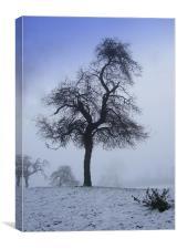 A Derbyshire winter scene