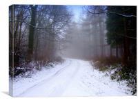 Woodlands Winter, Canvas Print