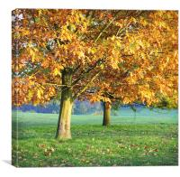 Autumn days, Canvas Print