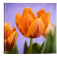 Flaming Orange, Canvas Print