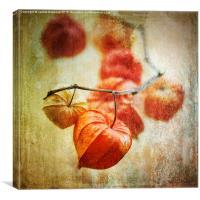 String of Lanterns, Canvas Print