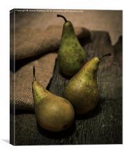 The Three Pears, Canvas Print