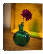 Green Bottle, Canvas Print