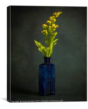 A Bottle with Flower, Canvas Print