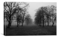 Foggy Walk, Canvas Print