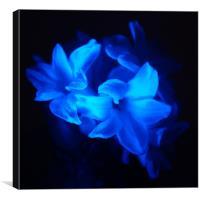 Blue Flowers, Canvas Print