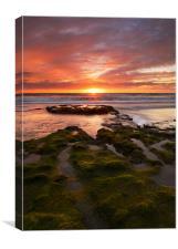 California Sunset , Canvas Print