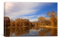Bosque Del Apache Reflections, Canvas Print