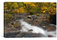 Autumn Downstream, Canvas Print