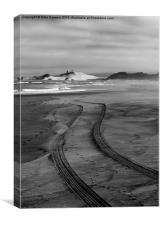 Sand Tracks, Canvas Print