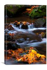 Cascades of Gold, Canvas Print
