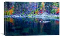 Ghostly Reflections , Canvas Print