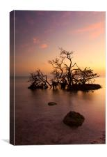 Florida Keys Sunset, Canvas Print