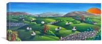 Burren Sheep #2, Canvas Print