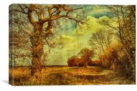 Norfolk Countryside., Canvas Print