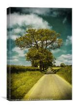 Along The Sweetbriar., Canvas Print