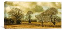 Country Scene, Canvas Print