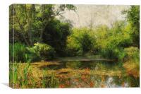 Dilham Pond, Canvas Print
