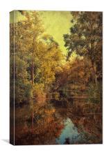 Beautiful Pond, Canvas Print