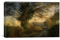 Plumstead Road 2, Canvas Print