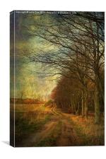 December Walks, Canvas Print