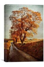 Sweetbriar Trees, Canvas Print