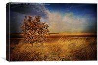 Holkham, Norfolk 2, Canvas Print