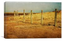 Holkham, Norfolk 8, Canvas Print