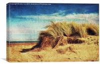 Holkham Dunes 3, Canvas Print