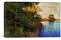 Autumn Holkham 2, Canvas Print