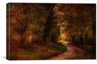 Road To Stody 2, Canvas Print