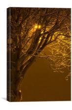Tree Under Orange Light, Canvas Print