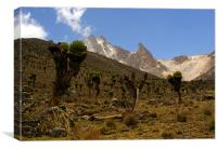 Mount Kenya from 14000ft, Canvas Print
