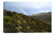Rainbow Valley, Canvas Print