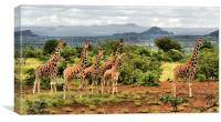 Giraffe Landscape, Canvas Print