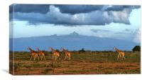Mt Kenya, Canvas Print