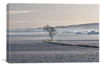 Winter Mist, Canvas Print