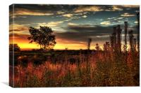 Waldridge Sunrise, Canvas Print