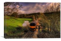 Taw Valley, Canvas Print