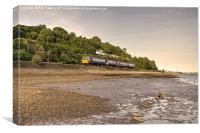 Teign Valley Pacer, Canvas Print