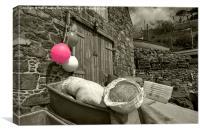 Pink Buoy , Canvas Print