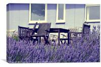 Summer Lavender, Canvas Print