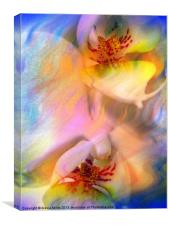 White Orchid Flower, Canvas Print