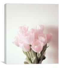 Simple Shade of Pink, Canvas Print