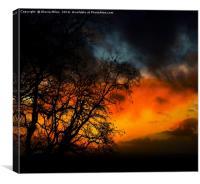 Sunset at Dawn, Canvas Print