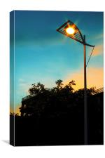 The Lonely Street Lamp, Canvas Print