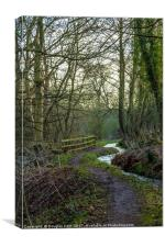 Countryside path Barry Mill, Canvas Print